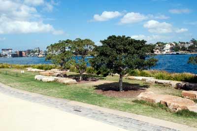 Harbour-Lawn-Barangaroo-Reserve